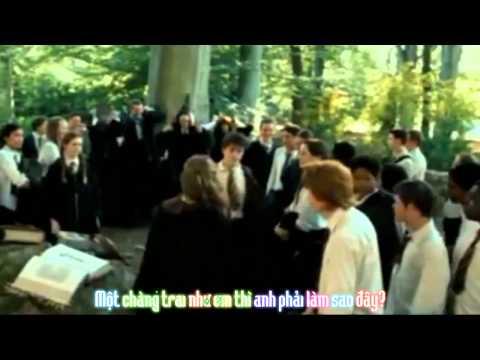 [Harry/Draco][Vietsub Parody] Boy like you