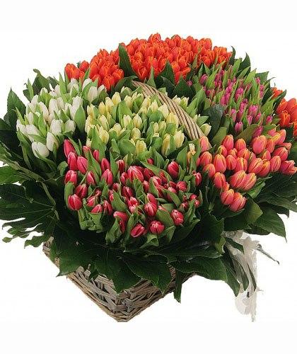 Заказ цветов цветы каллы купить
