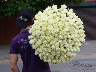 Светка соколова розовые розы