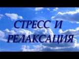 Стресс и релаксация - Вадим Зеланд