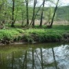 Уборка поймы реки Царица