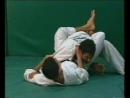 Jiu-Jitsu Basics Vol.2