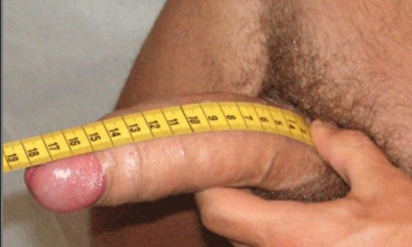 средний размер мужского члена Новороссийск