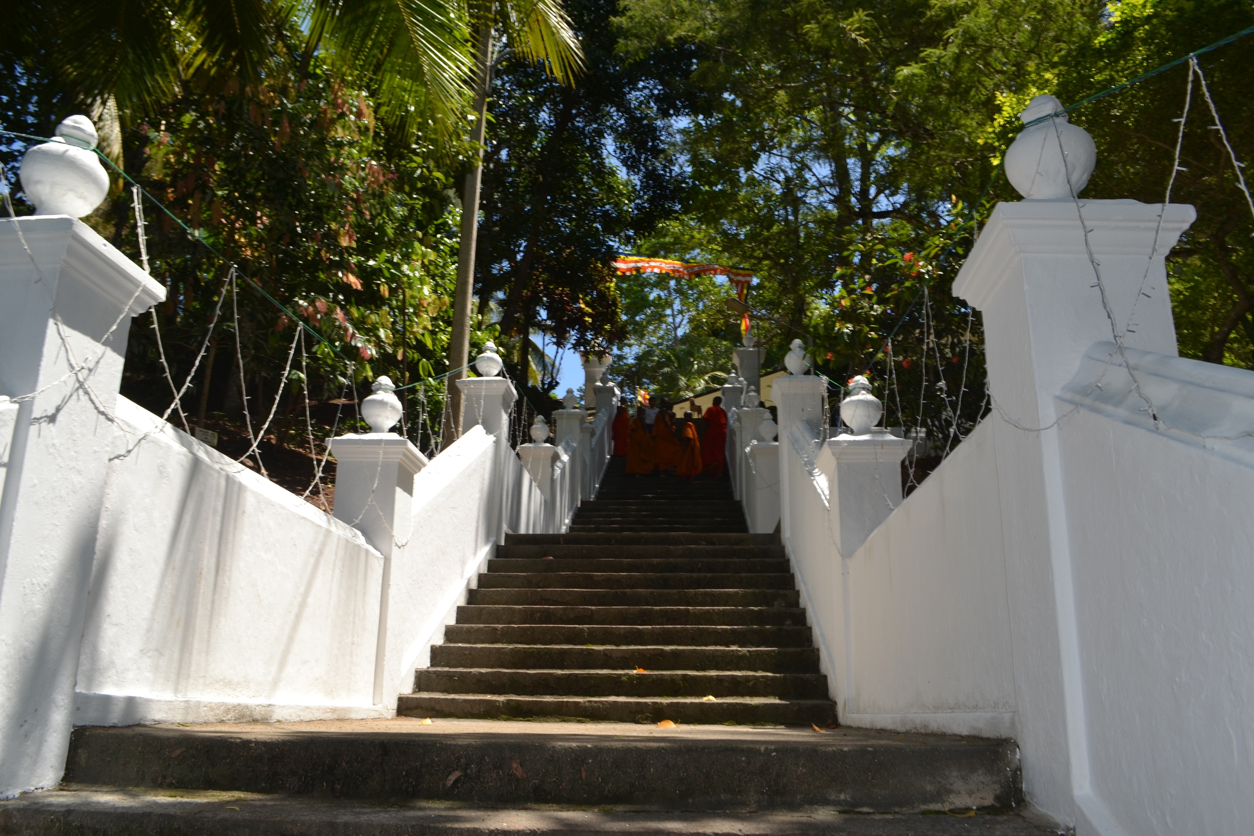 Шри Ланка (фото) - Страница 2 DL2q2zWbxuI