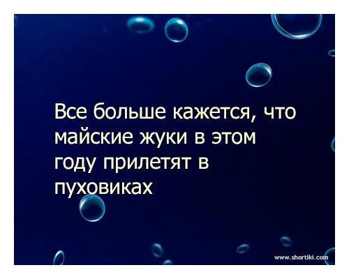 http://cs319324.vk.me/v319324102/4d84/6fdn1KsqsAo.jpg