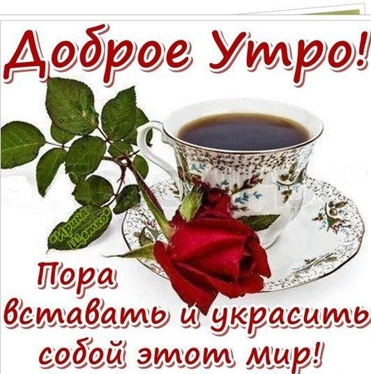 http://cs620516.vk.me/v620516817/16245/E3KJYKXcoNU.jpg