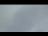 Настоящий дракон запечатлен на видео.