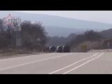 Как захватывали Крым — самые яркие моменты скачать с 3gp  mp4  mp3  m4a.mp4