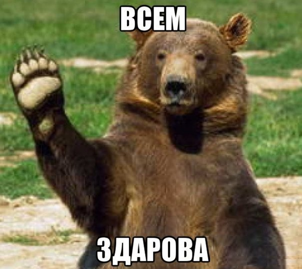 Антон Воробьев