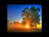 ВИА Самоцветы - Утренняя песня 1976 год.
