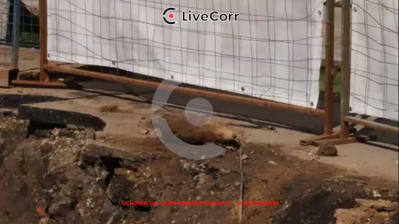 Из-за найденного снаряда эвакуировали школу в Москве