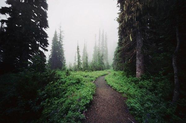 Гора Рейнэр, Вашингтон, США