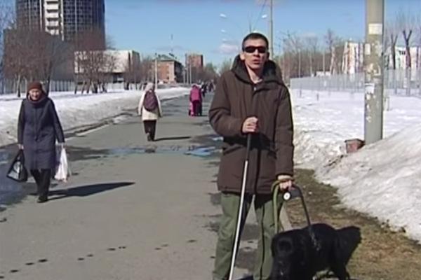 В Перми хулиган избил слепого инвалида и его собаку-поводыря В полицию города Перми поступило заявление от жителя краевой столицы Сергея Ивлиева, который пожаловался на то, что он, инвалид по