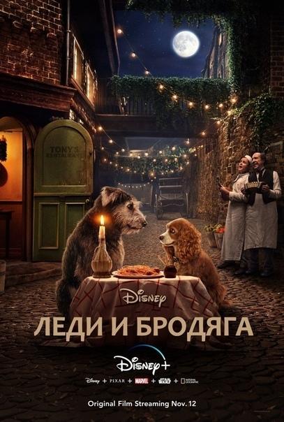 Леди и Бродяга (2019) 😍