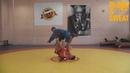 Рычаг колена из стойки Евгений Насыров. Боевое самбо.
