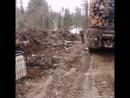 Лесной бмзнес 2018