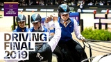 How Bram Chardon became the new FEI Driving World Cup champion Equestrian World