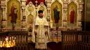 Проповедь иерея Димитрия Шевченко
