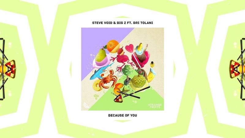 Steve Void Big Z Because Of You ft Bri Tolani Lyrics Lyric Video Strange Fruits Release