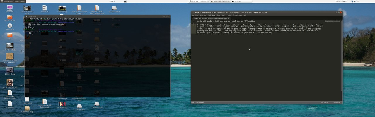 Linux Mint 15 MATE with panel on both screens.