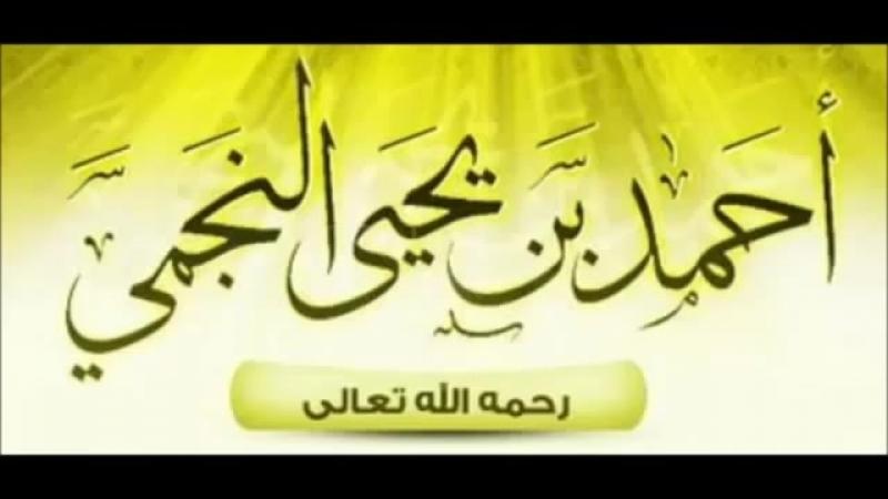 Шейх ан-Наджми: Шейх аль-Альбани и Шейх Раби'а мурджииты?
