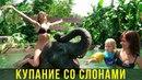 Купание со слонами на Пхукете Вика в восторге рекомендуем детям Тайланд