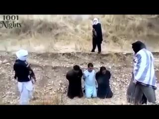 СПАСЛИСЬ от казни и расстреляли ТАЛИБАНовцев.