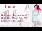 Red Velvet 레드 Member Profiles