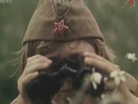 История создания военно-патриотической игры Зарница