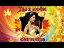 Клип на музыку Игоря Крутого Ты в моём сентябре.