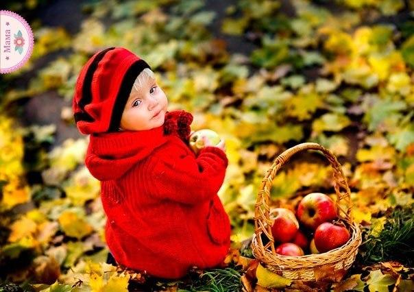 Песня осень милая шурши