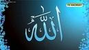 О любви Всевышнего Аллаха к Его рабам Тв Насихат