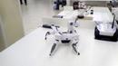Не обычный робот Робот танцует Выставка роботов Омск