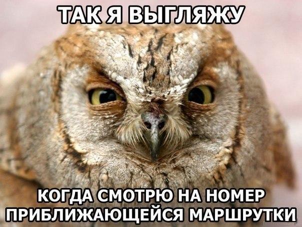 Форум русских жён и невест