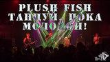 Plush Fish - Танцуи