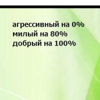 Саша Мокрецова, 24 декабря 1999, Александров, id122846674