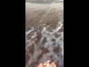 Азовское море, Ейск