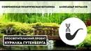Cовременная практическая ботаника Александр Мочалов