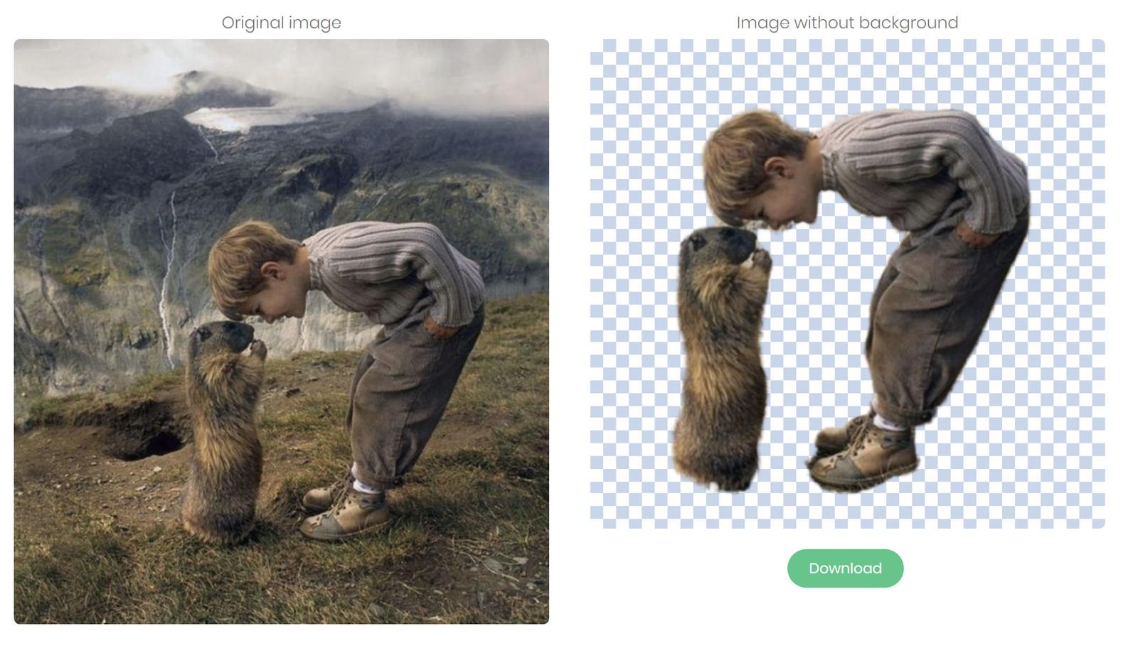 Нейросеть быстро уберет фон на фотографии