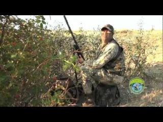 Охота на горлицу с чучелами. (Dove hunt in Ukraine) Сезон 2012 г