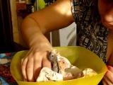 Кормление птенцов попугая корелла