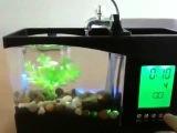 Обзор: Настольный мини аквариум и органайзер с USB питанием