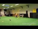 Voetbal snelheid oefening 3 Voetbalschool Joga Bonito HQ