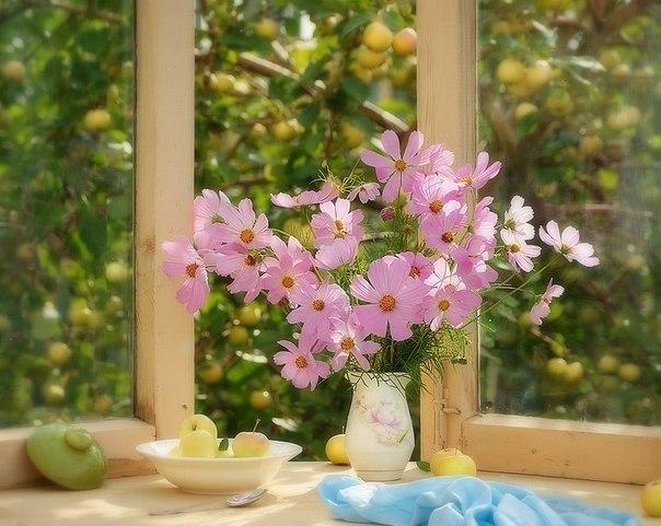 Новый День -новая жизнь (^_^)