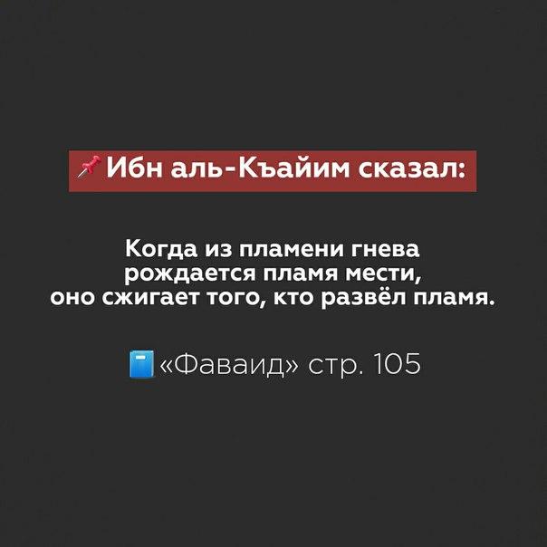 Фото №456243672 со страницы Амира Алханова