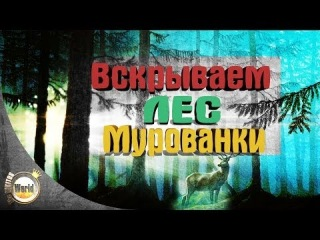 Вскрываем Лес Мурованки | Worldoftanks [wot-vod.ru]