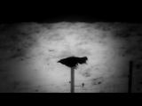 Parov Stelar feat. Claudia Kane - Six Feet Underground (Official Video)