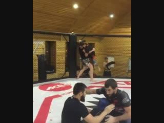Арби Агуев тренируется с Мамедом Халидовым