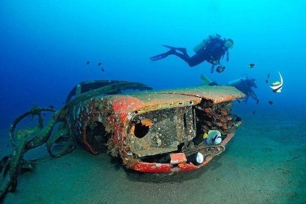 Захватывающие фотографии!  Брошенные автомобили могут быть не только на земле..