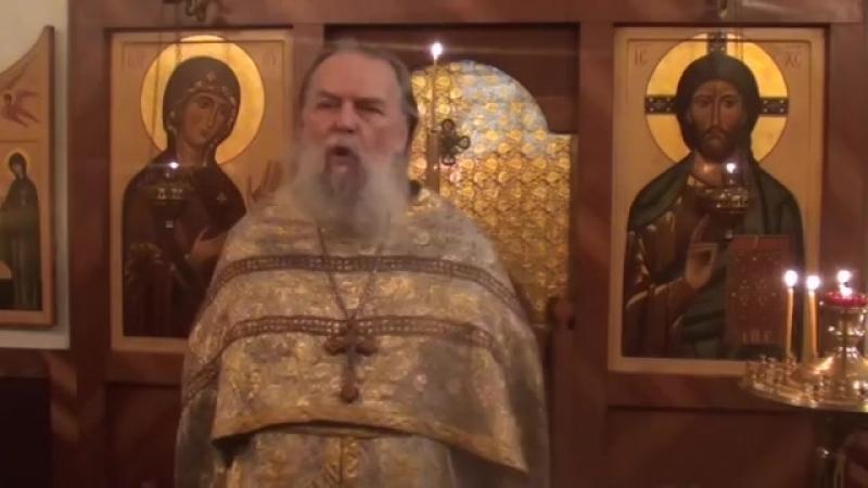 Священник Павел Адельгейм Проповедь на Вознеение Господне в храме свв Жён мироносиц Псков 27 5 2012